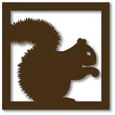 CS-squirrel-img