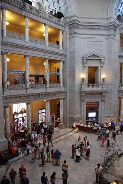 DC m-lobby