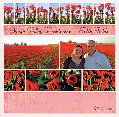 S&C-tulips-wb