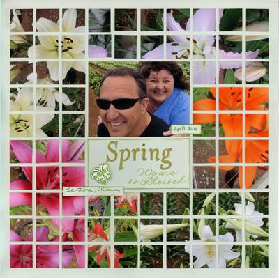 Spring smallcopy