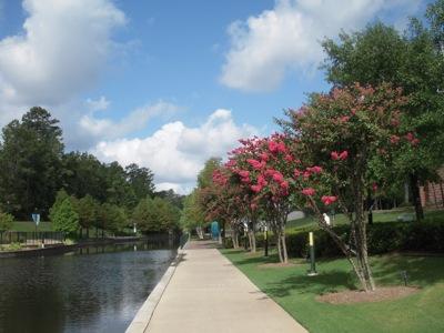 Waterway2