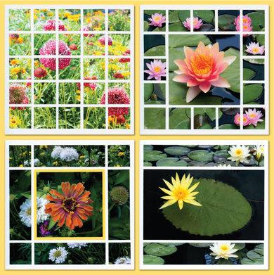 4flowersw