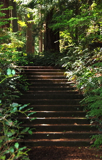Stairs60_3